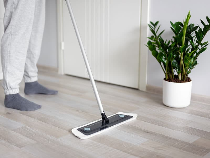 Mops for Hardwood Floor