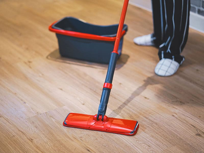 Mops for Hardwood Floors