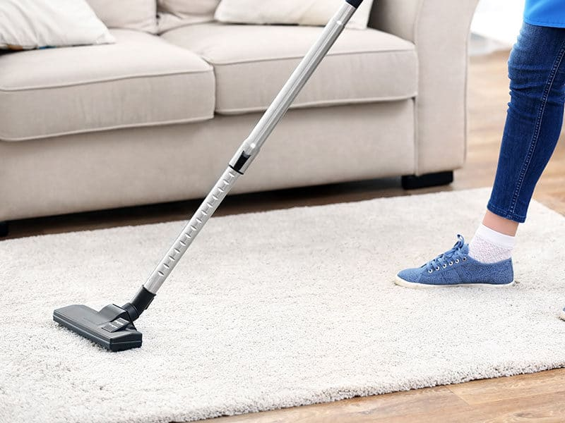 Vacuums Cleaner for High Pile Carpet