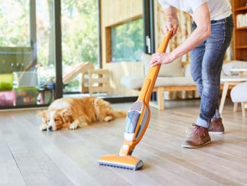 Best Bagless Vacuum Cleaners