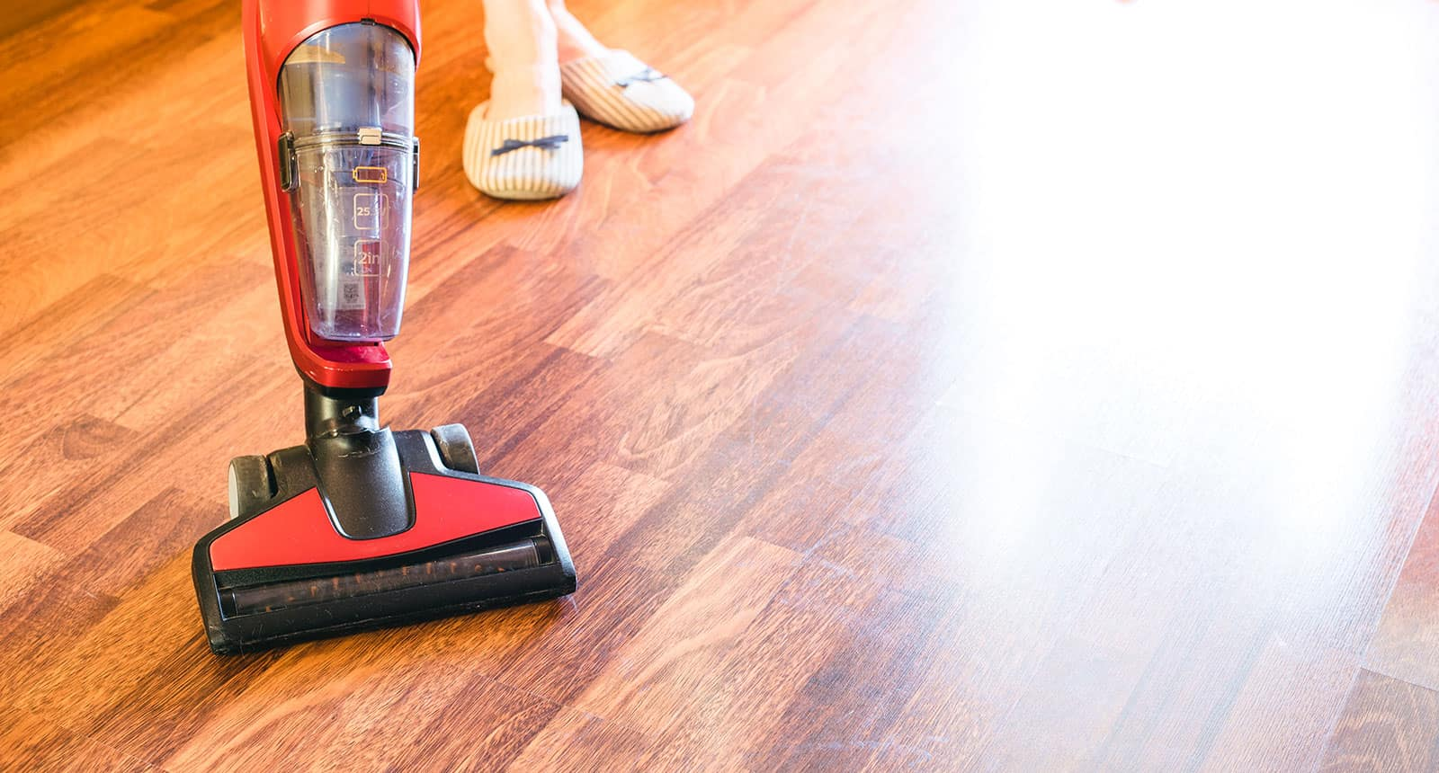 Best Shark Vacuum Cleaners For Pet Hair