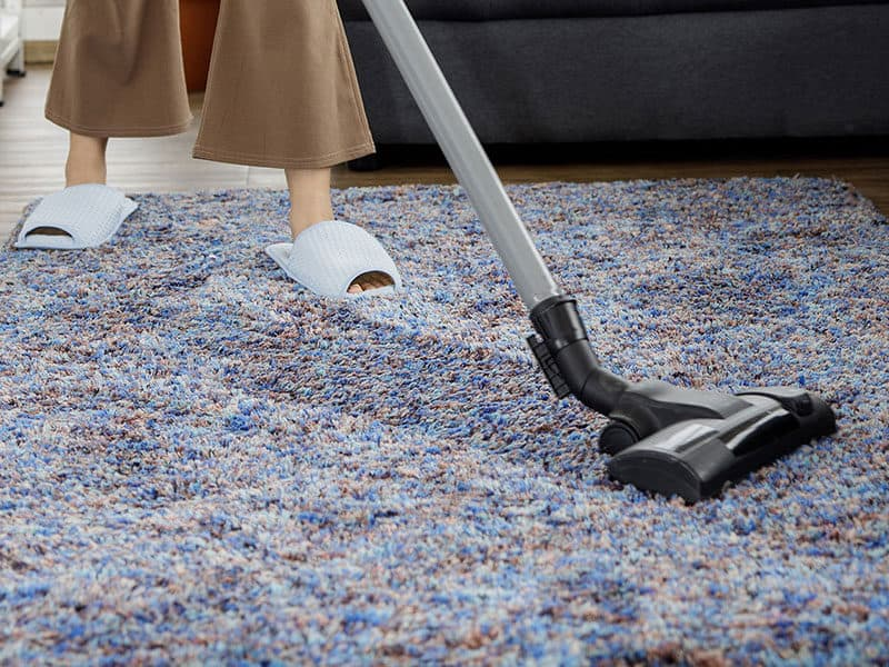 Portable Spot Cleaners for Carpet Stains