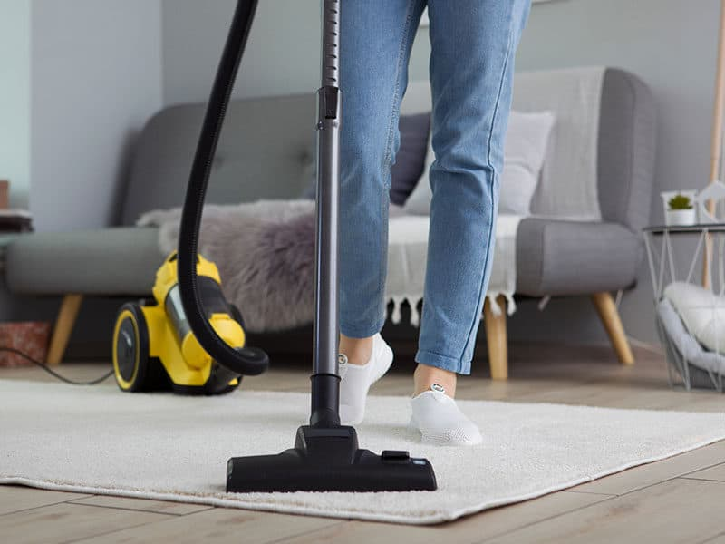 Portable Spot Cleaners For Carpet Stain