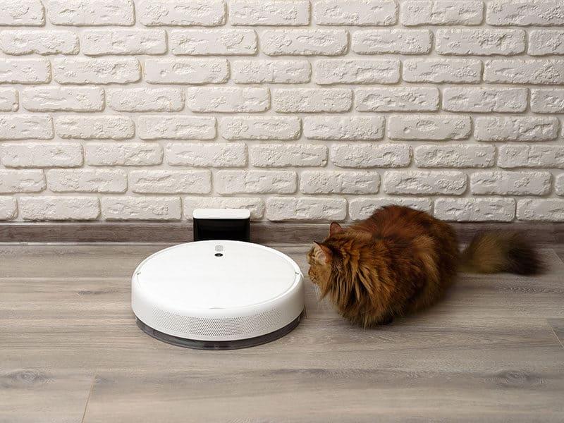 Roomba for Hardwood Floor