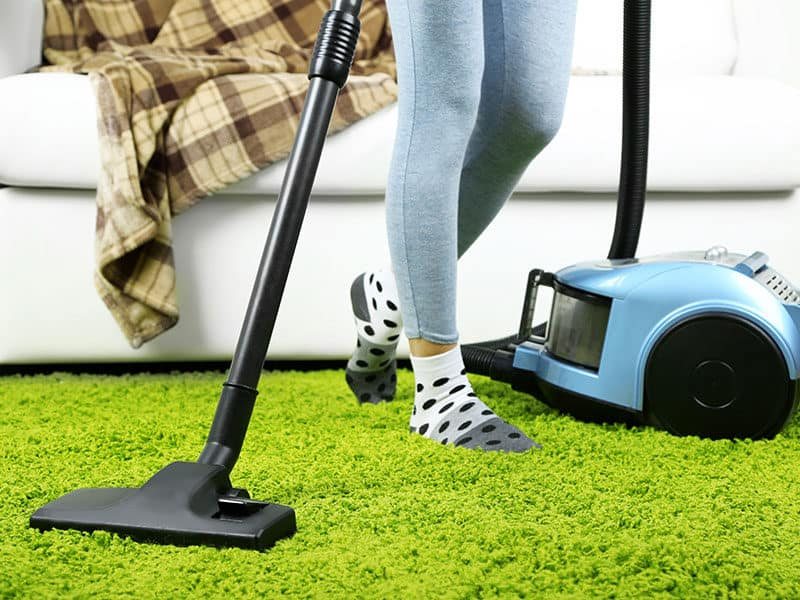 Vacuums Cleaner for Carpet