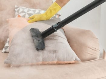 Best Multi-Purpose Steam Cleaners