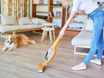 Best Eureka Vacuum Cleaner