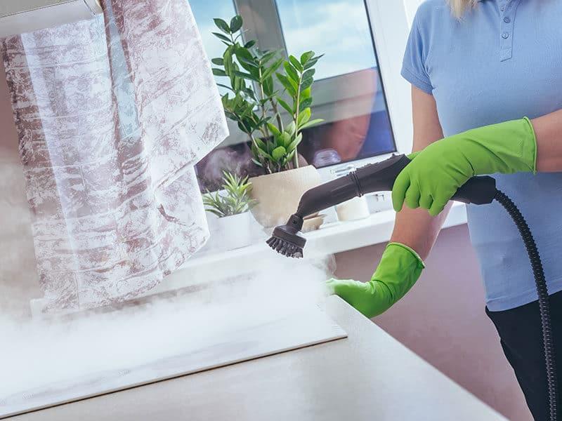 Handheld Carpet Cleaner