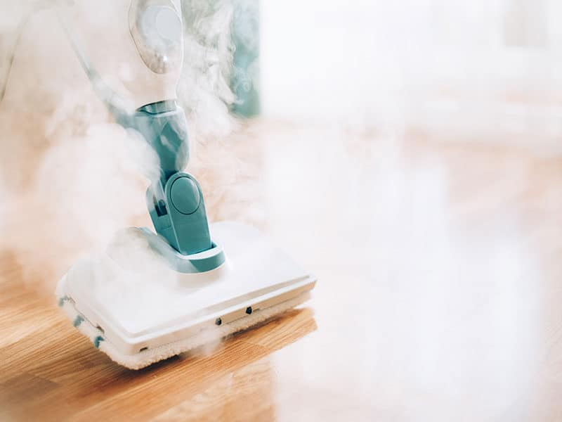 Multi-Purpose Steamer Cleaner