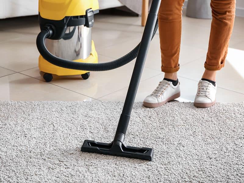 Vacuums for Berber Carpet