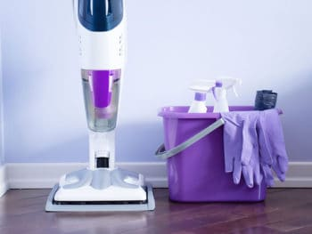 Best Floor Steam Cleaners