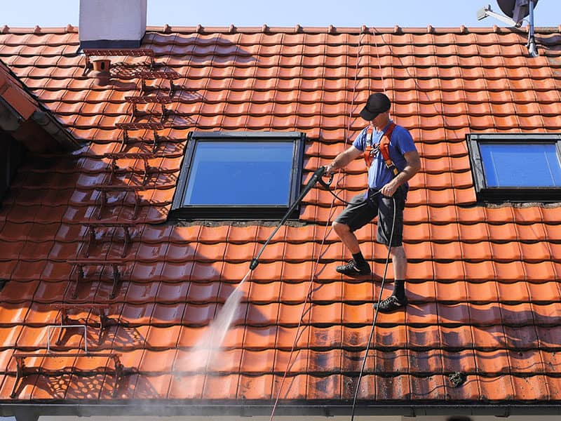 Roof Cleaners