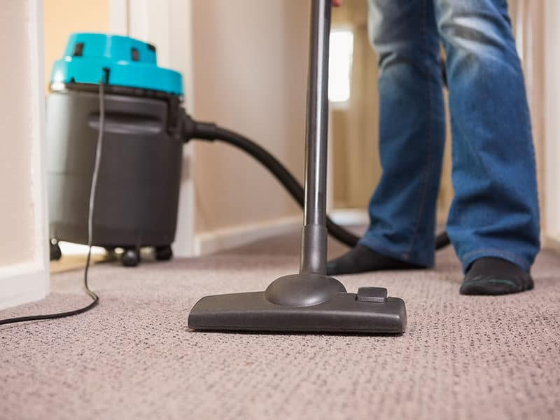 Vacuums for Area Rugs