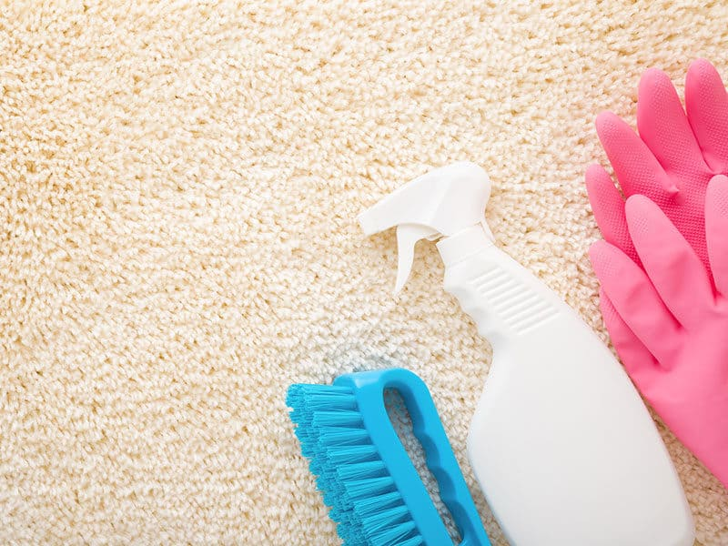 Cleaning Set For Stain Removing
