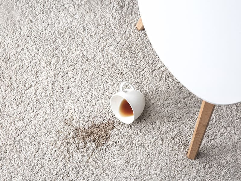 Cup Coffee Spilled on Carpet