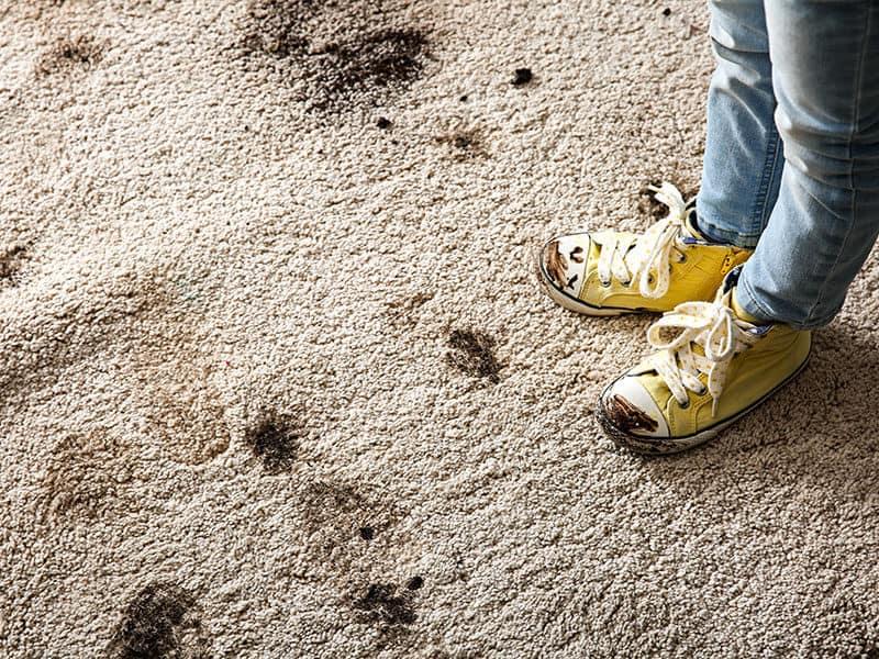 Muddy Shoes Carpet