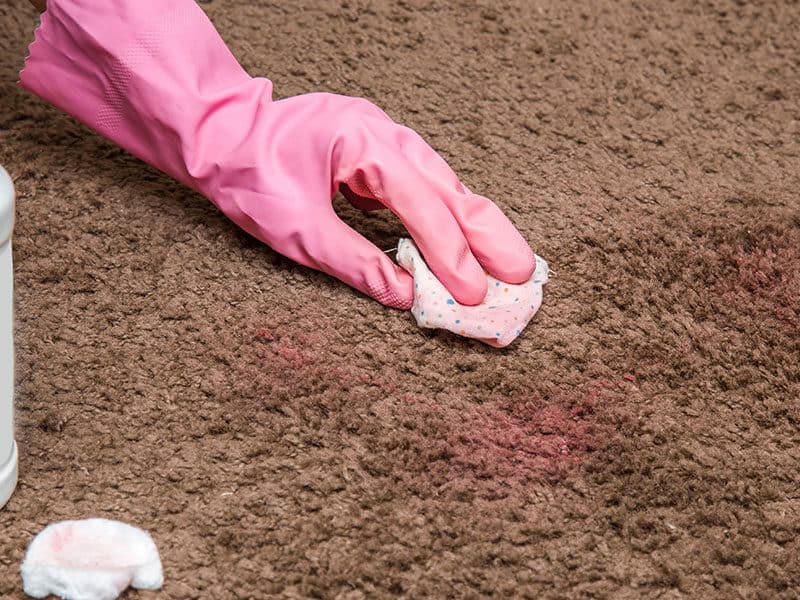 Nail Polish Stain Cleaning