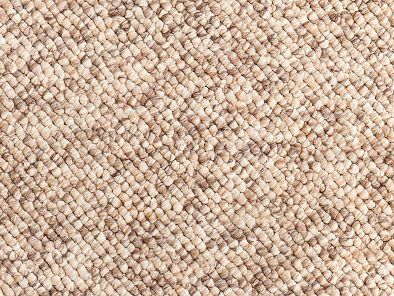 Beige Brown Carpet