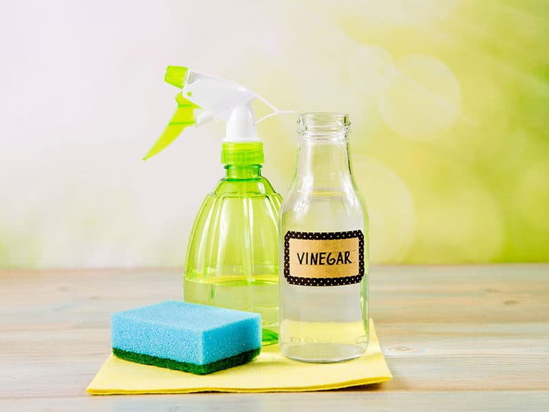 Chemical Free Cleaner
