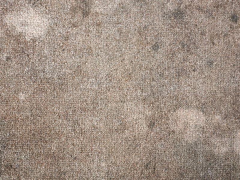 Dirty Brown Carpet
