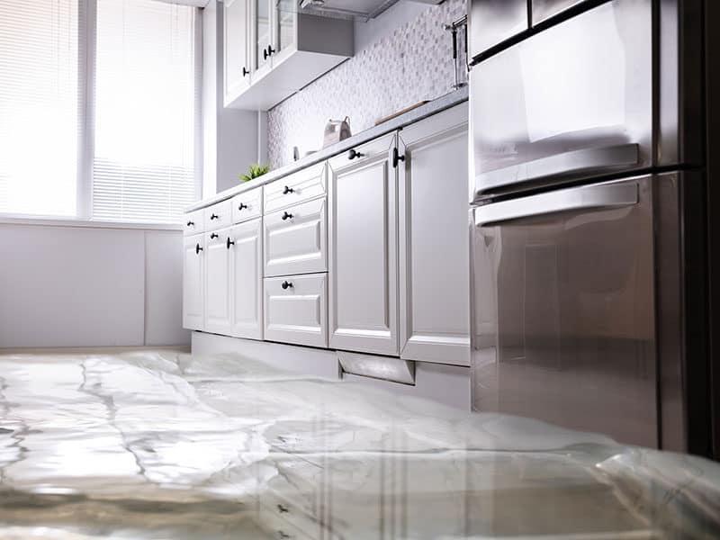 Flooded Floor Kitchen